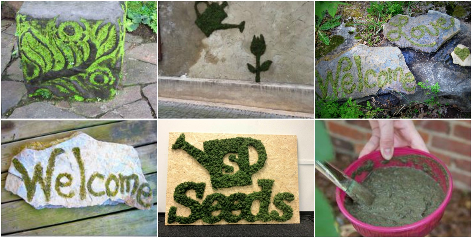 Diy How To Make Your Own Cool Moss Graffiti